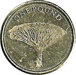 Gibraltar 1 Pound