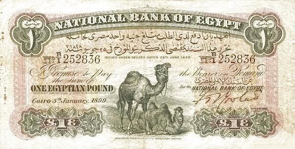 Egypt 1 Pound (1898)