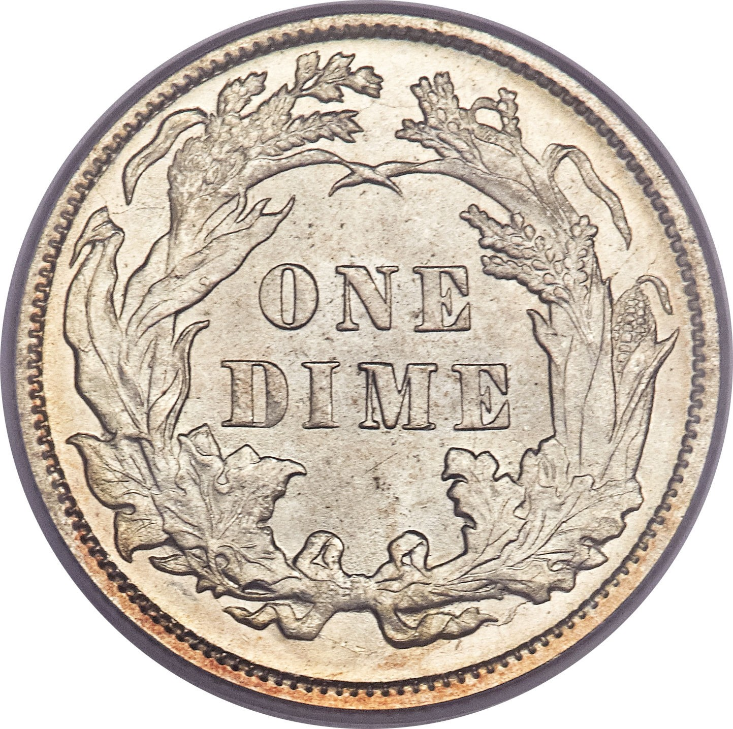 United States 1 Dime (1860-1891 Seated Liberty Dime-W/O Stars, Date Arrows Removed)