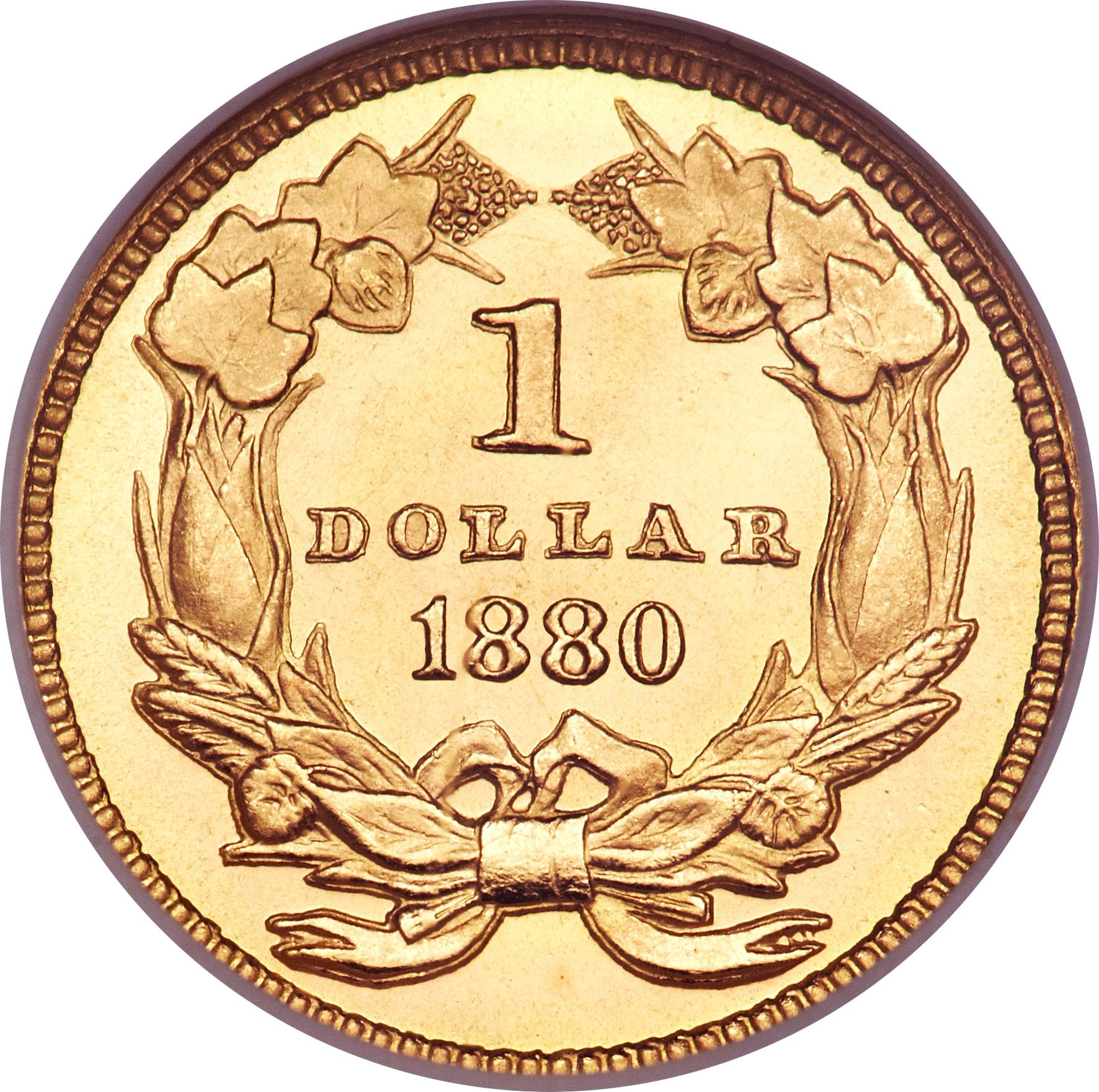 United States 1 Dollar (1856-1889 Large Indian Head)